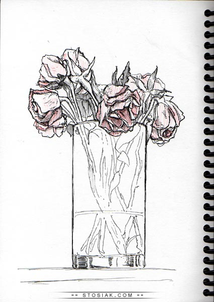 how to draw a dozen roses