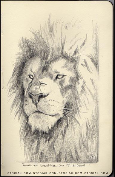 july_lion