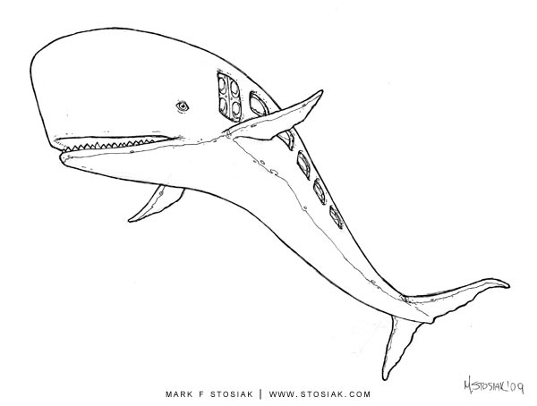 whalebus_02_web